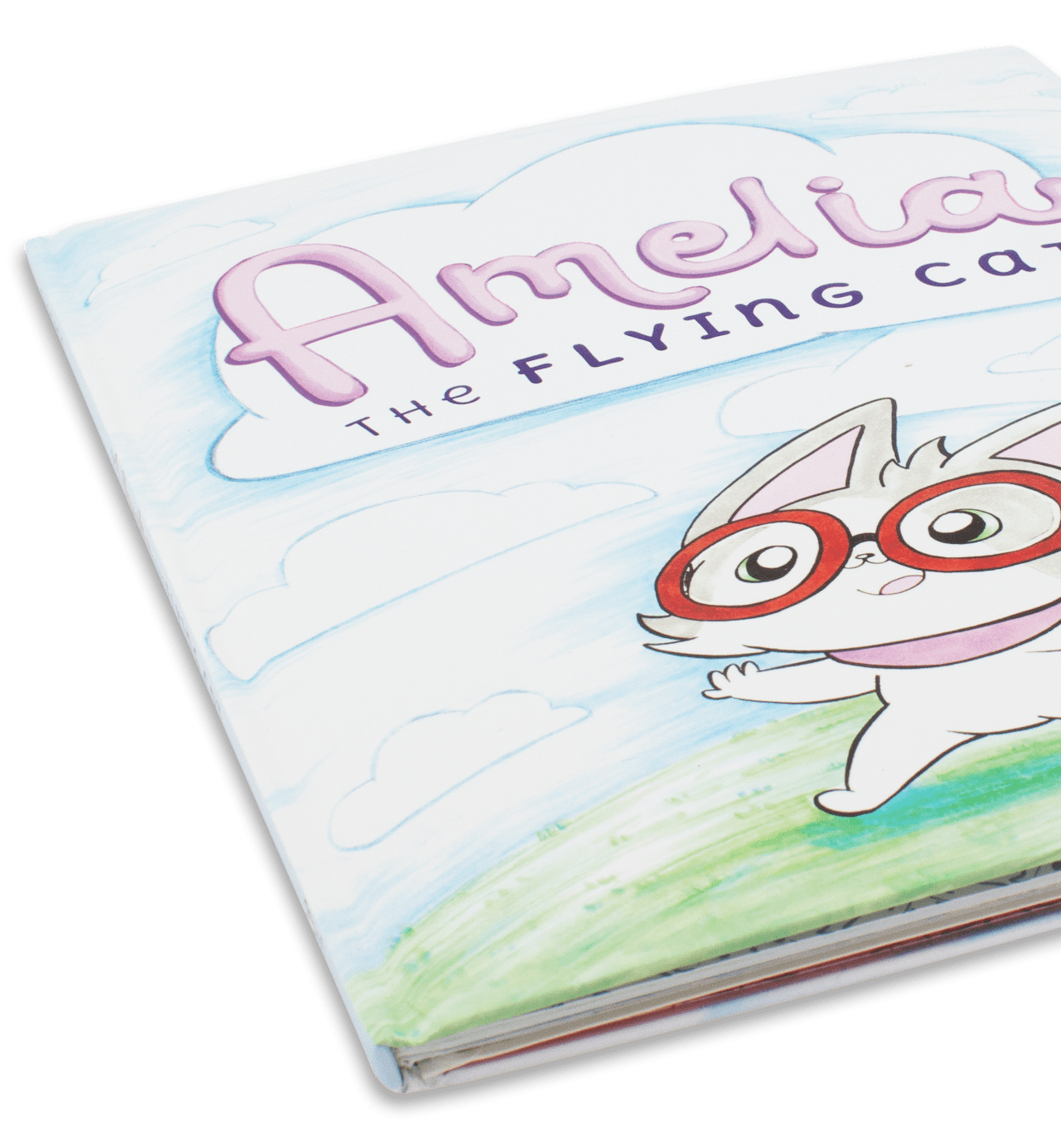 Premium Hardcover Children's Book Printing